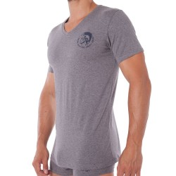 T-Shirt Iroquois Gris Diesel