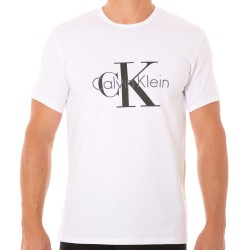 T-Shirt CK Origins Blanc Calvin Klein