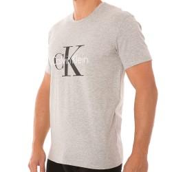 T-Shirt CK Origins Gris Calvin Klein